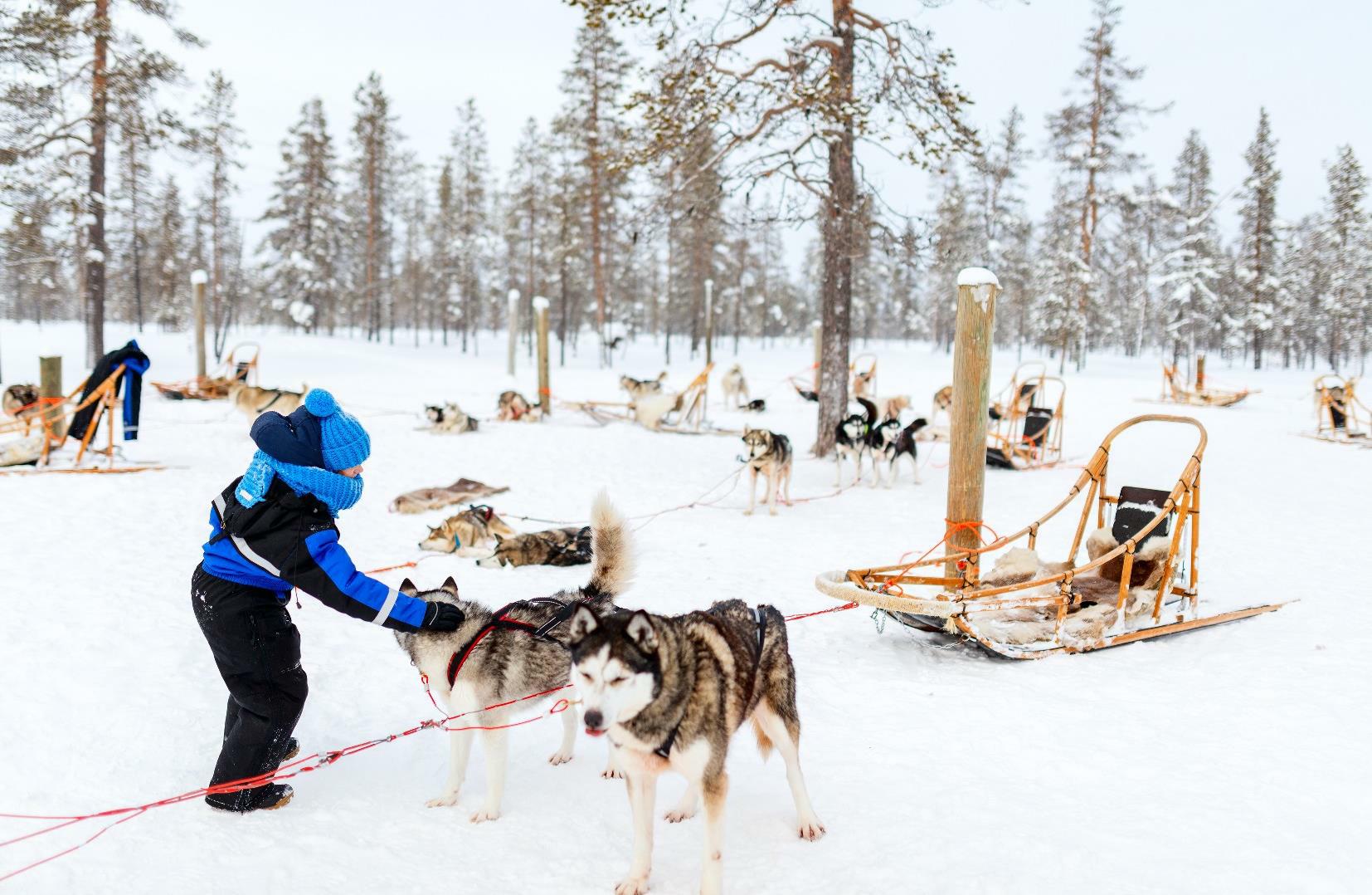 Lapland4kids - groepsreis maart 2019